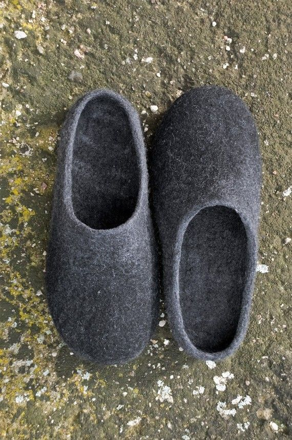 house slipper shoe2s