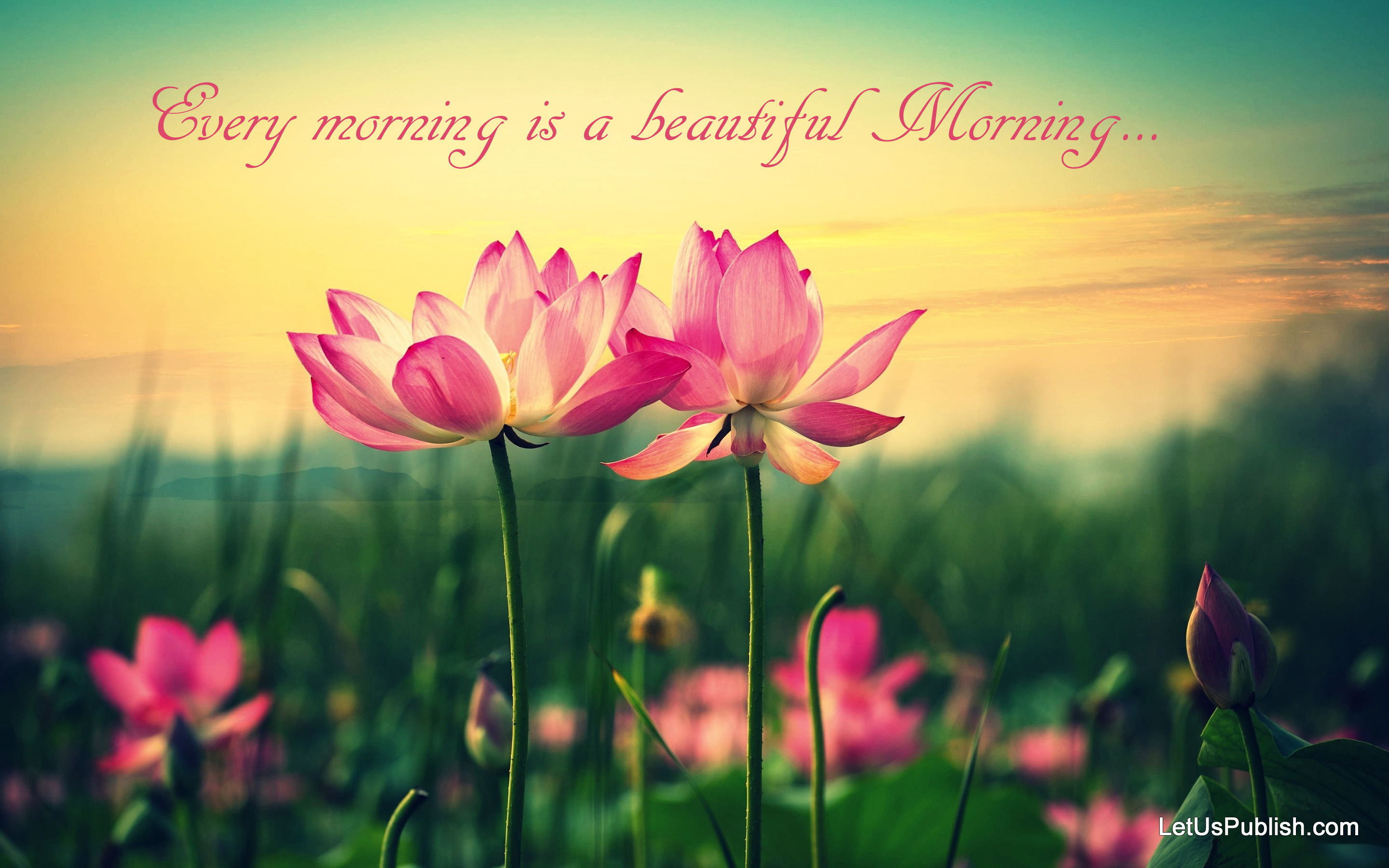 beautiful-good-morning-wallpaper