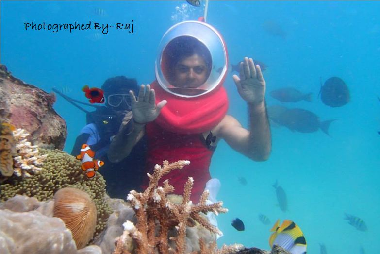 Under Sea Water Images HD Quality