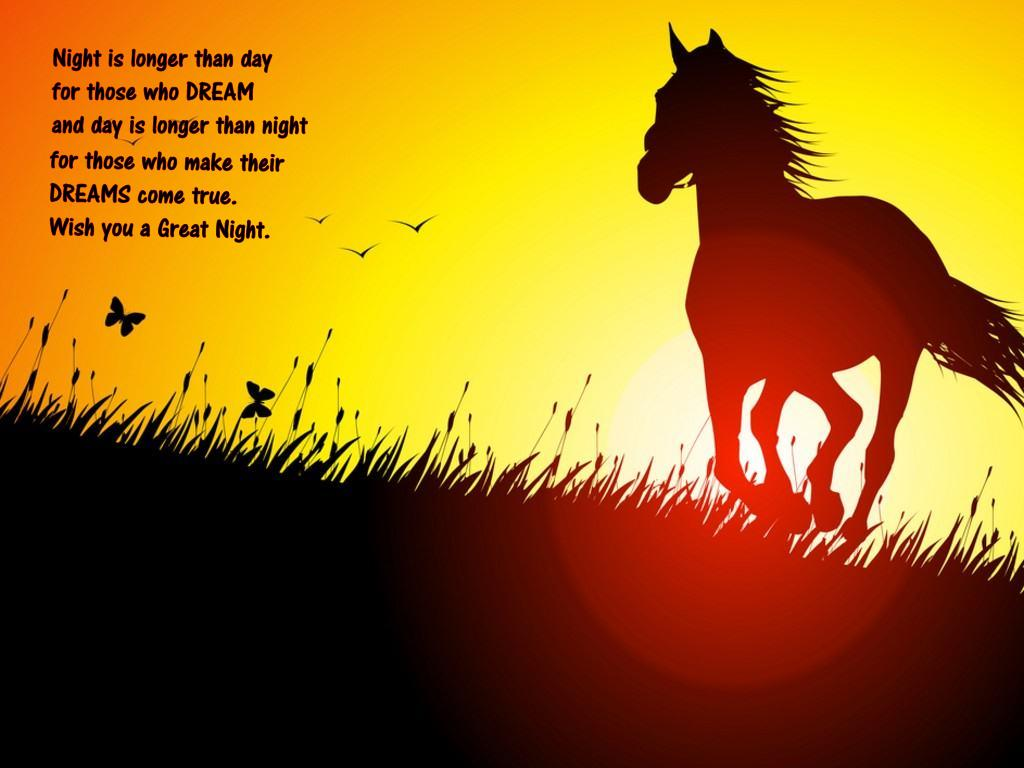 Sunset Time, Horse at beach - Wish you Good Night HQ Quotes Wallpapers