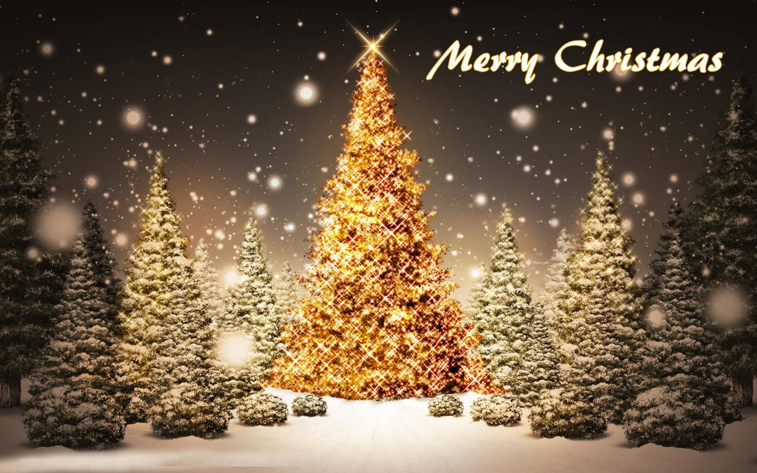 Merry Christmas Tree Hd Wallpaper free download