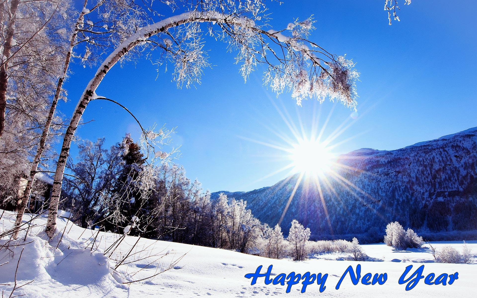 Winters Happy New Year Hd Wallpaper