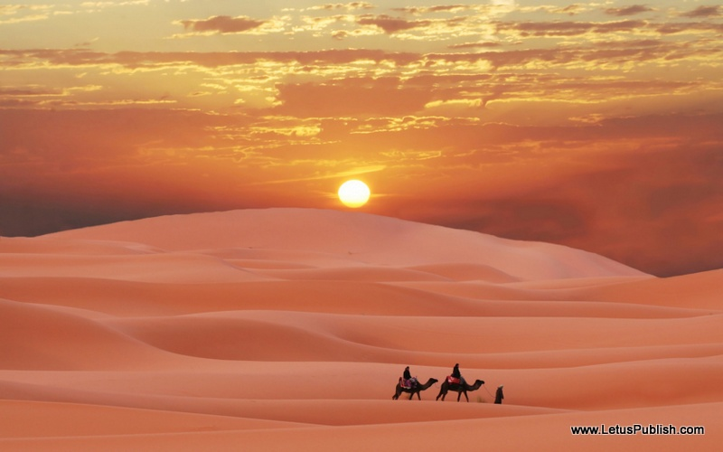 Desert evening hd wallpaper