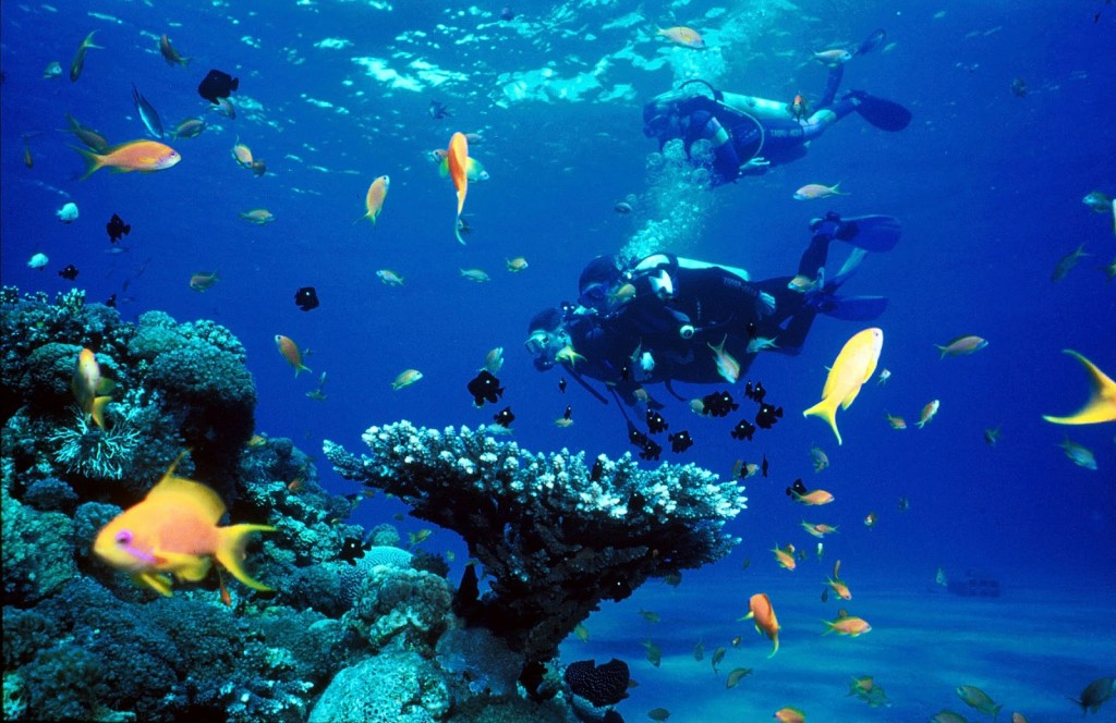 Lakshadweep Under Water Scuba