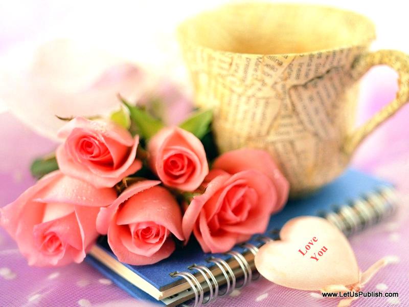 beautiful romantic pink roses hd imege