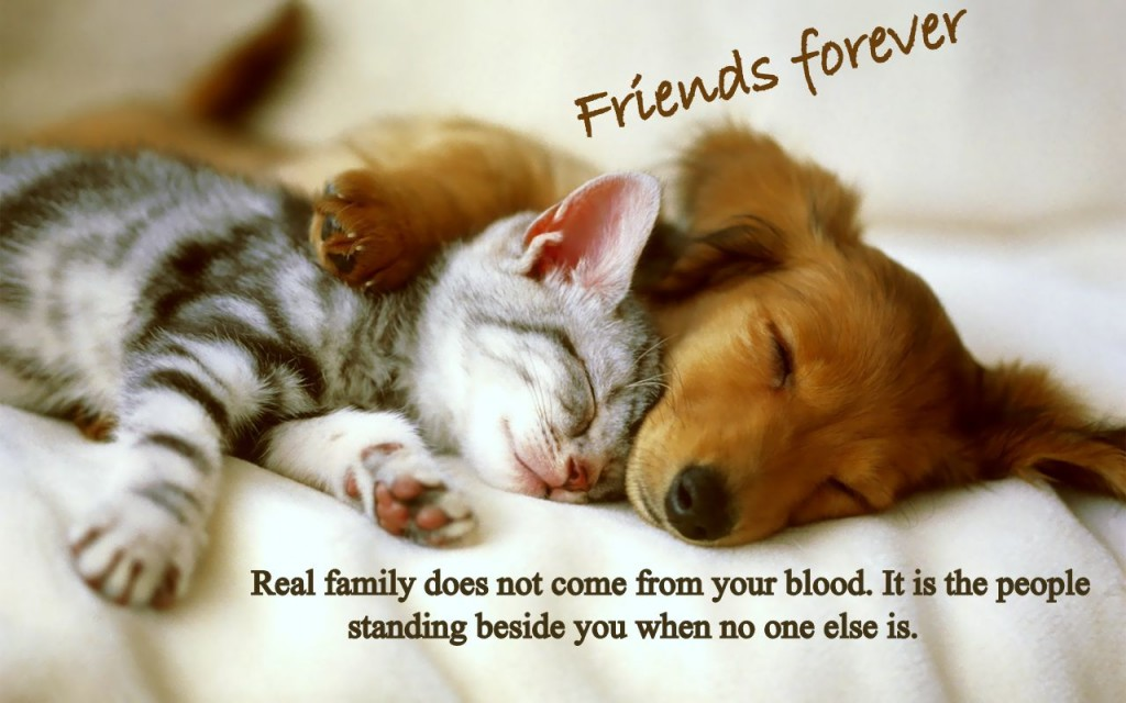 Cute friends image for facebook