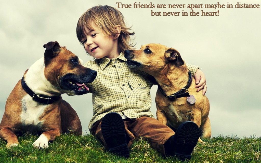 Sweet friendship wallpaper