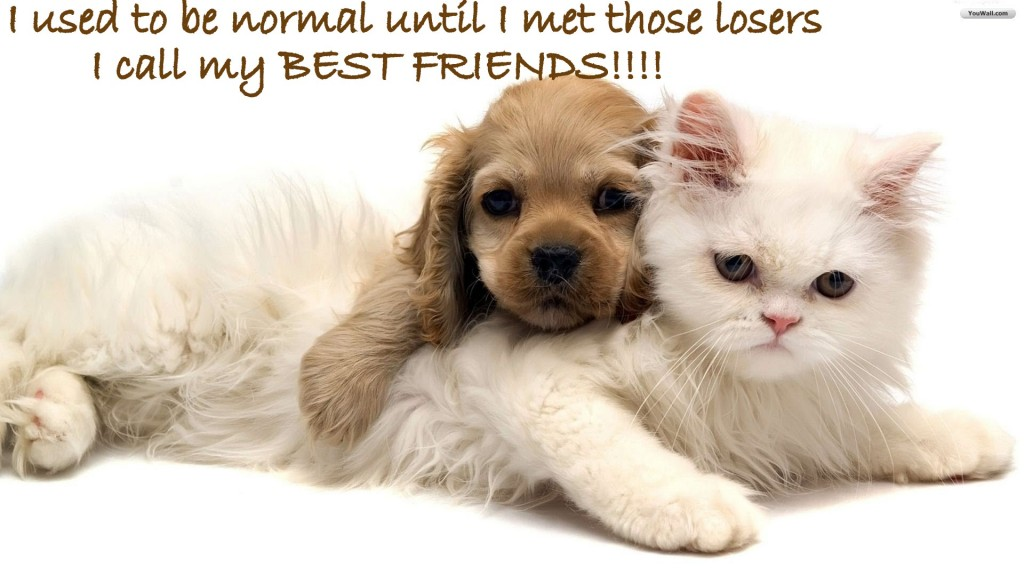 You are my best friendship hd image and sms