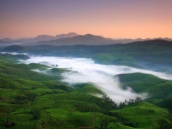 Perfect destination to beat your heat is the Munnar hill station