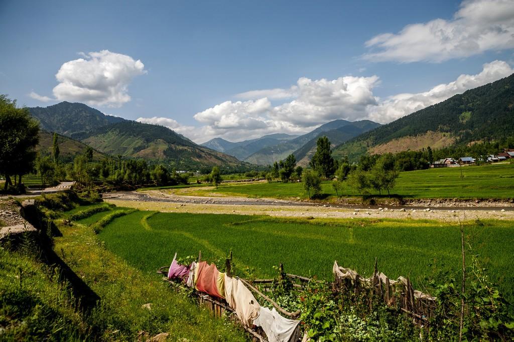 """Lolab Valley, Kashmir, India"""