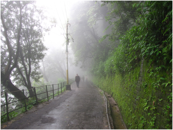Day Treks in Darjeeling by Man Bartlett