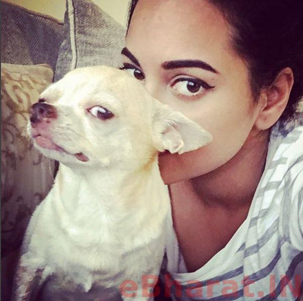 sonakshi-sinha-her-pet-dog selfie