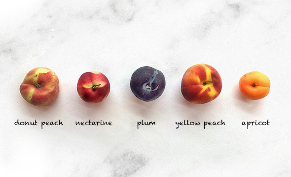 peaches-plums-and-nectarines