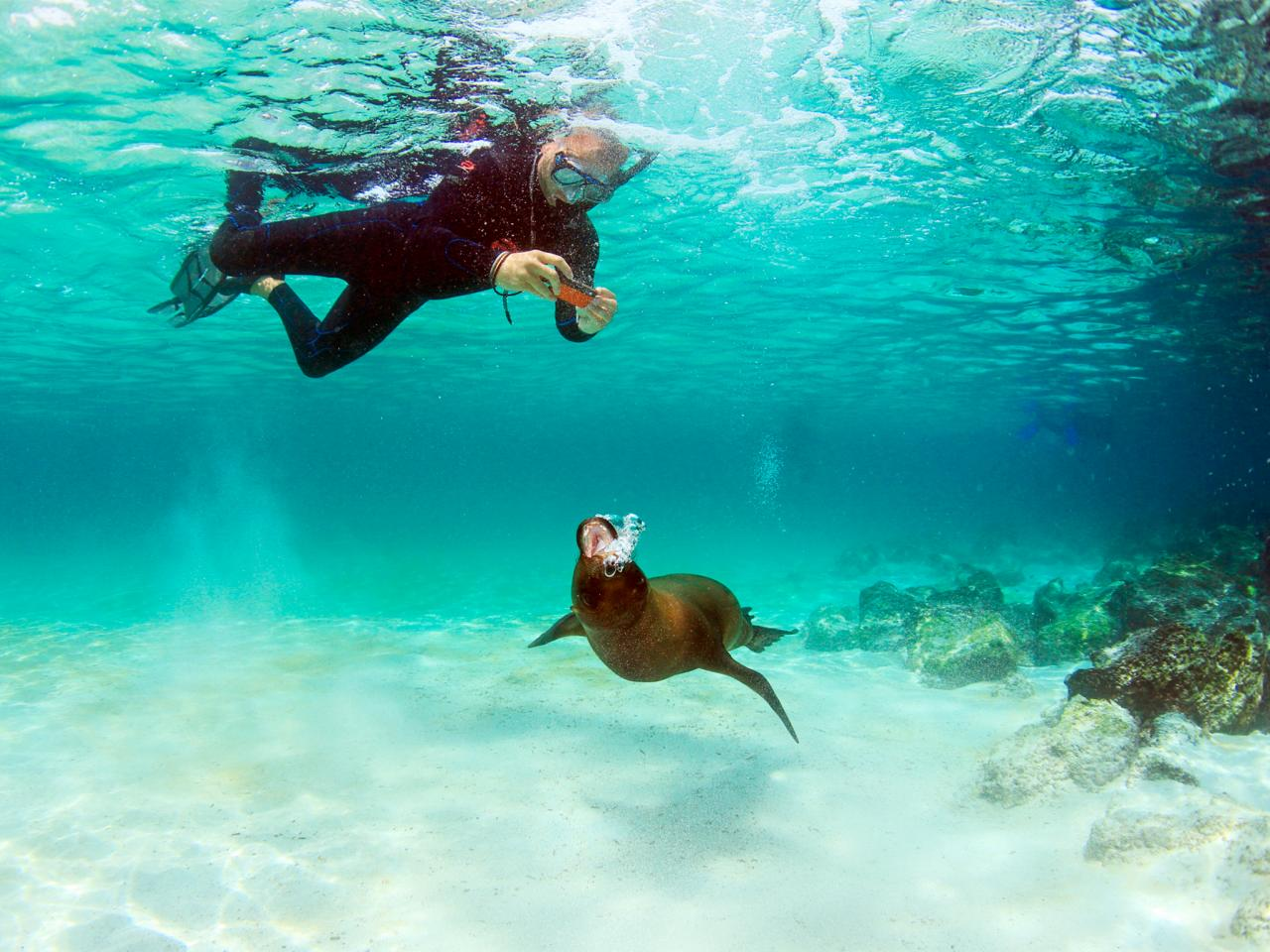 Galapagos-islands-a-la-eco-cruise - 5 Adventure International Holiday Destinations