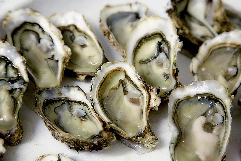 oyster-best-anti-aging-food