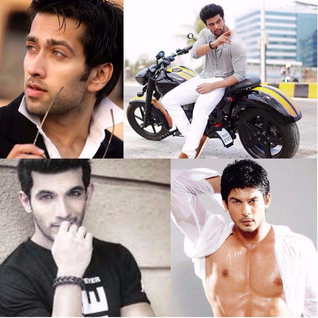 Top 8 Indian TV Male Actors Of 2017